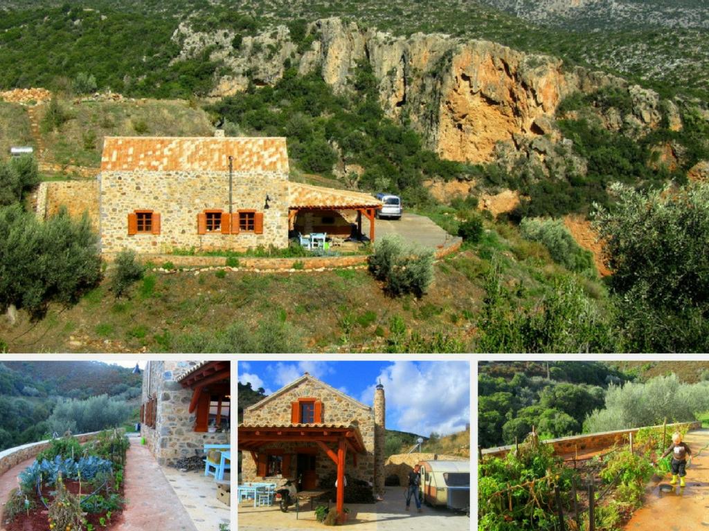 Lakudia Olivenölfarm auf dem Peloponnes