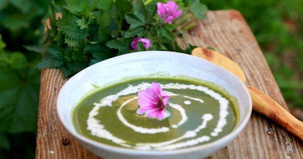 Soupa Tsouknidas kai Molochas (Σούπα τσουκνίδας και μολόχας) - Griechische Brennessel-Malven-Suppe